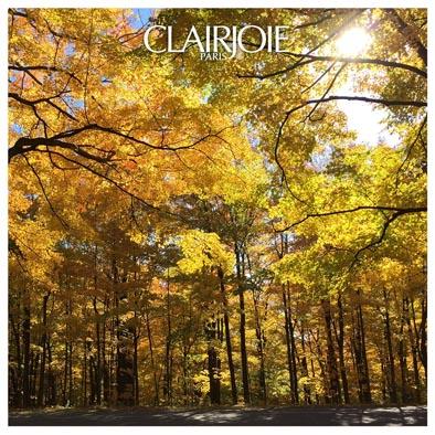 Blog Clairjoie : apporter de la lumière en automne