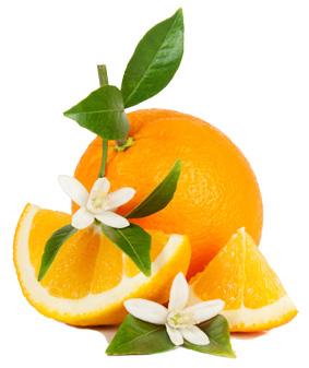 cosmetiques bio a la fleur d oranger Clairjoie